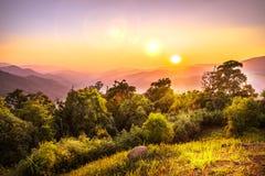 Ландшафт национального парка, phusawan chongyen Стоковое Фото