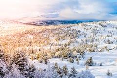 Ландшафт на восходе солнца, stryn Норвегии Стоковая Фотография RF
