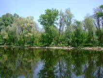 Ландшафт на реке с отражением деревьев в воде Стоковое Изображение RF
