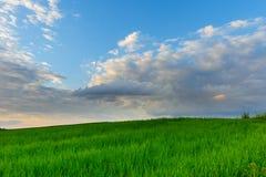Ландшафт на луге и чудесном небе на заходе солнца Стоковая Фотография