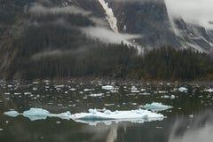 Ландшафт на фьордах руки Трейси в Аляске Соединенных Штатах Стоковое Изображение