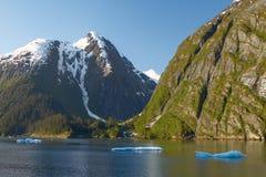 Ландшафт на фьордах руки Трейси в Аляске Соединенных Штатах Стоковые Фотографии RF
