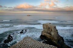 Ландшафт Новая Зеландия - пляж Muriwai Стоковое фото RF