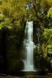 Ландшафт Новая Зеландия - McLean падает на реку Tautuku Стоковые Изображения