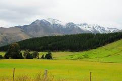 Ландшафт Новой Зеландии Стоковое фото RF