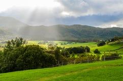 Ландшафт Норвегии стоковые изображения