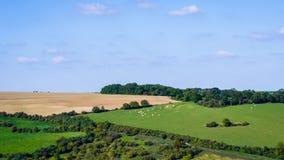 Ландшафт Нормандии Стоковая Фотография RF