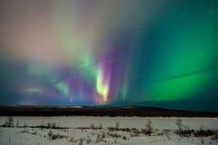 Ландшафт ночи зимы с лесом, дорогой и приполюсным светом над деревьями стоковая фотография