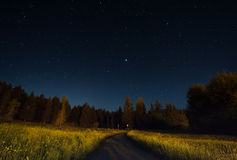 Ландшафт ночи под starlight Стоковые Фото