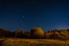 Ландшафт ночи под starlight Стоковое Фото