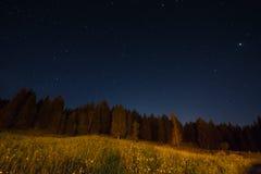 Ландшафт ночи под starlight Стоковое Изображение RF