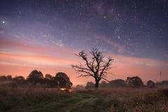 Ландшафт ночи с путем под звездами стоковая фотография rf