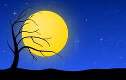 Ландшафт ночи Стоковая Фотография RF