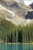 Ландшафт озера морен альбатроса Канада стоковые изображения