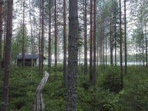 Ландшафт озера сауны кабины леса Стоковая Фотография RF