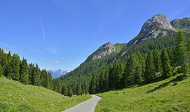 Ландшафт около Cason di Lanza Стоковое Изображение RF