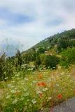 Ландшафт домов горы Стоковые Фотографии RF