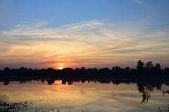 Ландшафт оранжевых неба и силуэта дерева Стоковые Изображения RF