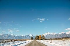 Ландшафт дороги с лошадью Стоковые Фотографии RF