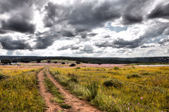 Ландшафт дороги стоковое изображение