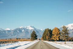 Ландшафт дороги Стоковое Изображение RF