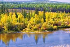 Ландшафт осени Аляска Северная Америка Стоковое Изображение