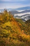 Ландшафт осени в горах Lago-Naki Стоковые Изображения RF