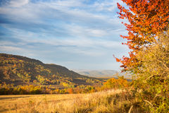 Ландшафт осени в горах Lago-Naki Стоковое Изображение