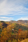 Ландшафт осени горы с красочным лесом стоковая фотография rf