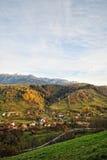 Ландшафт осени горы с красочным лесом стоковое фото rf