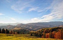 Ландшафт осени горы с красочным лесом стоковые фото