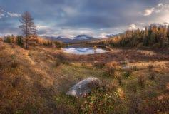 Ландшафт осени озера зеркал поверхностный широкоформатный с горной цепью на предпосылке Стоковые Изображения RF