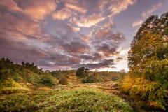 Ландшафт осени около Haltwhistle Стоковая Фотография