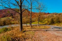 Ландшафт осени, дорога водя в горы, голубое moun стоковое изображение rf