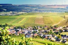 Ландшафт осени с виноградниками и малым европейским городком Стоковое Фото