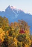 Ландшафт осени с лесом и горной цепью березы Стоковая Фотография RF