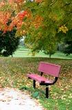 Ландшафт осени с красным стендом Стоковое Изображение