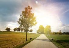 Ландшафт осени с дорогой стоковое фото