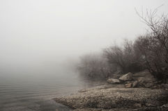 Ландшафт осени с туманом Стоковые Фотографии RF