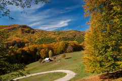 Ландшафт осени стоковое фото rf