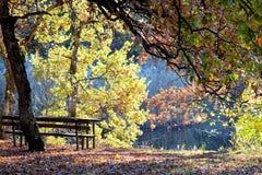 Ландшафт - осень Стоковая Фотография RF