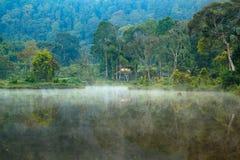 Ландшафт отражения стоковое фото rf