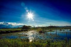 Ландшафт охраняемой природной территории Sherburne национальный стоковое изображение