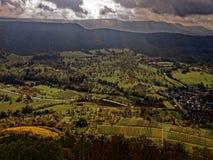 Ландшафт панорамного взгляда немецкий с виноградниками на падении Стоковая Фотография RF