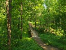 Ландшафт парка лета с малым деревянным мостом Стоковая Фотография RF