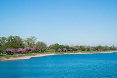 Ландшафт парка друида в Балтиморе, Мэриленде Стоковые Изображения