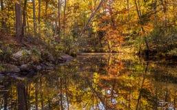 Ландшафт падения Арканзаса, Петит парк штата Джина Стоковое фото RF