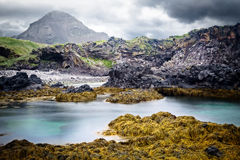 Ландшафт побережья Исландии утесистый Стоковые Изображения RF
