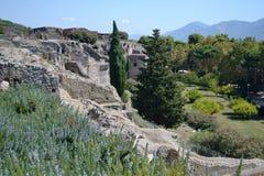 Ландшафт Помпеи Vesuvius Стоковые Изображения RF