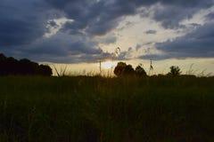 Ландшафт полей и лугов Стоковая Фотография RF